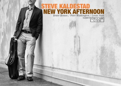 Steve Kaldestad Afternoon In New York